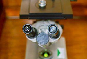 Metalloscope-d